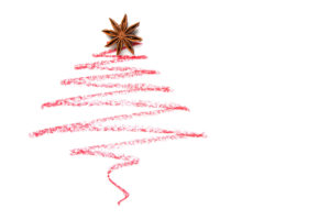 48555742 - a christmas tree drawn with anise star, isolated on white background